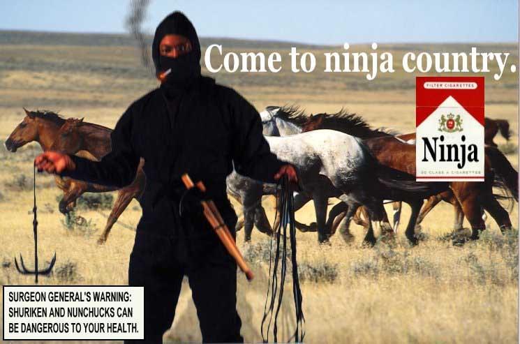 ninjasmoke.jpg